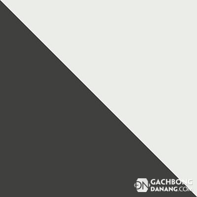 Gạch bông cổ điển DNT 101.1